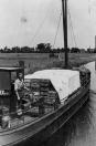 Steffen v/d Werf met zijn beurtschip Tjerk Hiddes op weg naar Sneek. Hij had de groentekwekers Van der Schoot, Kussendrager en Van der Wal als vaste klanten om hun producten naar de veiling in Sneek te brengen.