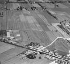 Een luchtfoto van Gorredijk in 1951.