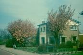 Huis fam. Zuidersma 1969