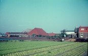 1976 Tuinbouwbedr.vd Schoot