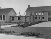 Trimbeets 1955