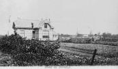 Het landhuis met op de achtergrond twee molens