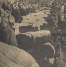 1962 Oktober, Er was weer geen doorkomen aan, zo tegen net middaguur op Gerdykster merke. Zeer veel vee stond aan de balies gebonden en verders moest elke bezoeker minstens een keer door de Hoofdstraat gaan: je kon op de hoofden lopen.