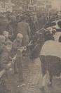 1966 Oktober, Te voet naar de Gerdykster merke was eenvoudig genoeg, maar met de auto niet. Een kilometer voor het dorp stonden ze al langs de weg geparkeerd. In Gorredijk kwam men recht op de koeien aanrijden, maar een onverbiddelijke politieagent wees naar rechts of links en daar stonden de wagens ook bumper aan Bumper; en het was nog maar kwart voor 9. Na een half uur zoeken toch nog een plaatsje gevonden: achter het postkantoor.
