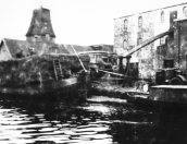 Hooilevering bij de Olieslagerij tijdens de oorlogsjaren 1940/1945. Op de achtergrond de schorsmolen die Nauta aan de firma Posthuma verkocht. De wieken waren er al afgehaald.