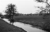 De woningbouw in het weiland tussen Neijewei, Weike, Oosterend en Dwarsvaart ging wegens bezwaren van omwonenden niet door.
