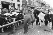 Koeien, pinken , paarden en boeren op de veemarkt in 1985.
