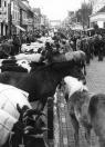 De veemarkt in de Hoofdstraat in mei 1976.