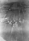 Op 22 juli maakte Sietse Teijema een rondvlucht boven Gorredijk. Met een door hem zelf gemaakte glasplatencamera maakte hij een aantal foto's zoals bovenstaande. In het midden van de foto de Hegedyk, met achter de boerderij van Heere de Vries het voetbalterrein waar een wedstrijd werd gespeeld. Rechts van de witte streep (Nijewei) stond nog de later afgebroken Mariahoeve, verder naar boven it Weike en de Lijkweg nu de Leijen.