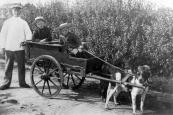 Sint de Jong met zijn zonen Piet en Rykele in de hondekar op de Nijewei. plm.1905